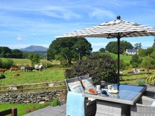 5* Tryfan, Betws-y-Coed, Snowdonia National Park - Capel Garmon vacation rentals