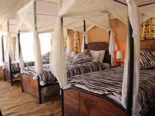 Triple Tent- Serengeti Acacia Camps - Serengeti National Park vacation rentals