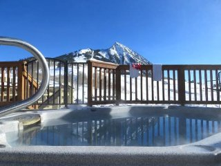 Nice Condo with Television and Fireplace - Crested Butte vacation rentals