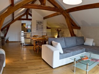 Ecological flat Paris Disneyland for 2 to 5 people - Lagny-sur-Marne vacation rentals