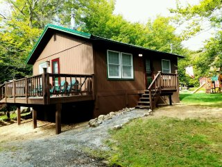 BEACH ACCESS! 1 mi. to Water Safari, Quiet, Deck! - Old Forge vacation rentals