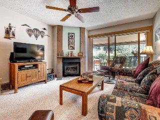 Ski Inn 336 - Steamboat Springs vacation rentals