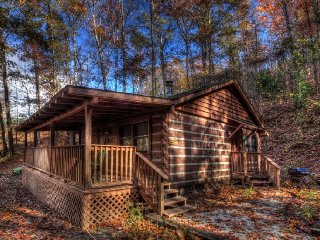 Nice 1 bedroom Bryson City Cabin with Deck - Bryson City vacation rentals