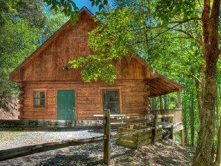 Nice 2 bedroom Cabin in Bryson City with Deck - Bryson City vacation rentals