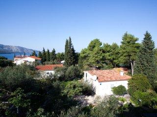 """Apartmani """"Villa Mira"""" - Stari Grad vacation rentals"""