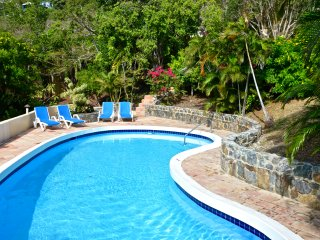 Amazing views and tropical paradise! - Charlotte Amalie vacation rentals