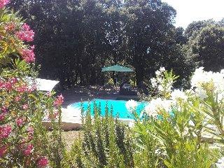 Gîte de Charme, Ajaccio / Propriano - Petreto-Bicchisano vacation rentals