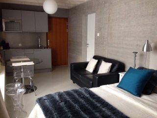 Très joli studio meublé neuf - Nice new studio - Morges vacation rentals