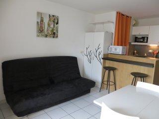 Beau Studio cabine, 4 personnes, 50 M de la plage - Cap-d'Agde vacation rentals