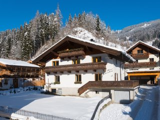 1 bedroom Apartment with Internet Access in Muhlbach am Hochkonig - Muhlbach am Hochkonig vacation rentals