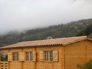 résidence hôtelière dans chalets individuels - Calacuccia vacation rentals