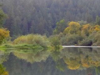 Haven on Earth! New rental! 5 min.stroll to River! Wineries! 3 nights for 2! - Guerneville vacation rentals