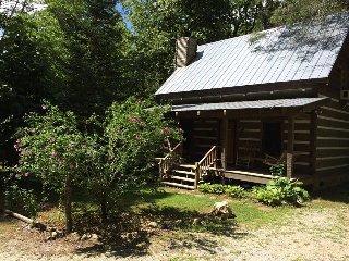 Beautiful 2 bedroom Dillard Cabin with Internet Access - Dillard vacation rentals