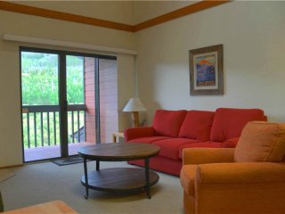 Cozy Frisco Apartment rental with Internet Access - Frisco vacation rentals
