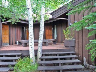SALT LICK TOWN HOME - Silverthorne vacation rentals