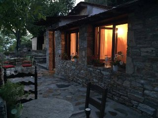 The little house in the forest close to Milies - Vyzitsa vacation rentals
