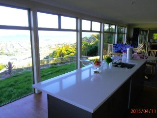 Viewtiful Guest House Executive - Wellington vacation rentals
