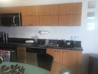 BEAUTIFUL APT IN DOWNTOWN MIAMI 4 PPL - Coconut Grove vacation rentals