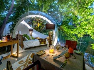 Bubble Lodge : expérience exclusive avec la nature - Bois Cheri vacation rentals