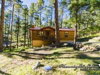 Cowboys / Angels 778 - Ruidoso vacation rentals
