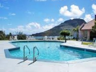 Banyan Harbor:  12 DAYS! Dec 23 - Jan 3 Enjoy! - Lihue vacation rentals