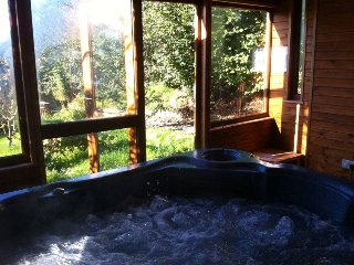 Cottage Private Hot Tub in Log Cabin - Dolanna - Llandysul vacation rentals