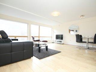 Splendid Long Stay Apartment - Dublin vacation rentals