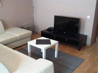 Miodowa Tiger apartment in Stare Miasto with WiFi. - Warsaw vacation rentals