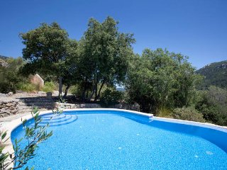 Spectacular villa in the mountains - Puigpunyent vacation rentals