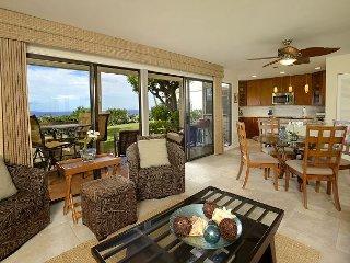 Wailea Ekolu #303 - Maui vacation rentals