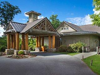 Presidential Villa near Blue Ridge Parkway - Cashiers vacation rentals