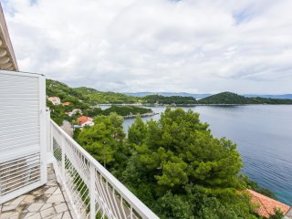 Apartments Marija- Two-Bedroom Apartment with Balcony and Sea View - Babino Polje vacation rentals