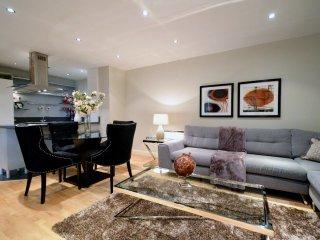 Albert Bridge Apartments - 1 Bed Riverview Flat - London vacation rentals