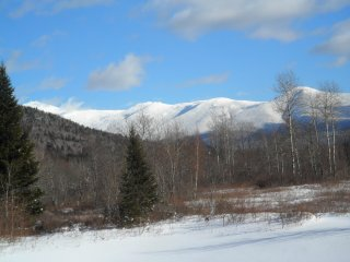 Peaceful retreat in Nat'l Forest, 1 mile to skiing - Bretton Woods vacation rentals