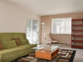 Lovely 1 Bedroom Apartment - Washington vacation rentals