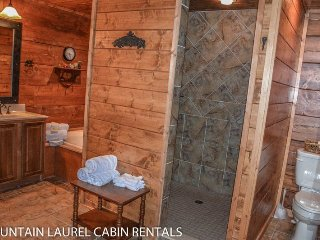 BEAR CREEK CROSSING- 4BR(PLUS LOFT)/4.5BA- SLEEPS 14, CREEK SIDE, SECLUDED, VOLLEYBALL COURT, HORSESHOE PIT, HOT TUB, OUTDOOR FIRE-PIT, WIFI, GAS AND WOOD BURNING FIREPLACES! STARTING AT $350 A NIGHT! - Blue Ridge vacation rentals