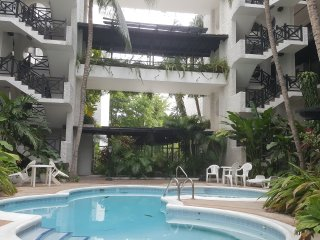 Bright 2 bedroom Apartment in Kingston with Internet Access - Kingston vacation rentals
