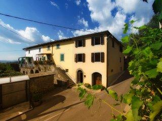 Charming house in quaint Tuscan mountain village - Fosciandora vacation rentals