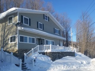 Slope side ski in ski out at Bromley Mountain Reso - Peru vacation rentals