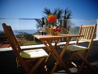 Funchal Top view - Funchal vacation rentals