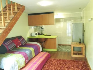 Romantic 1 bedroom Temuco Apartment with Internet Access - Temuco vacation rentals