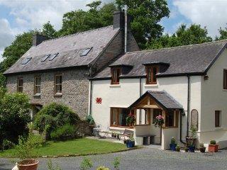 Basel Cottage (BASEL) - Llandovery vacation rentals