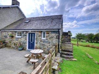 Comfortable 2 bedroom Ganllwyd Cottage with Television - Ganllwyd vacation rentals