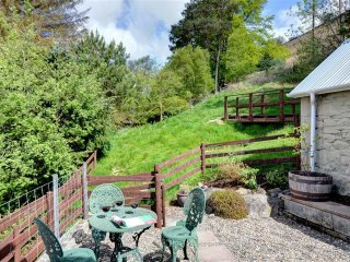 Nice 1 bedroom Llangurig Cottage with Internet Access - Llangurig vacation rentals