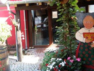 Nice 3 bedroom Gite in Olwisheim - Olwisheim vacation rentals