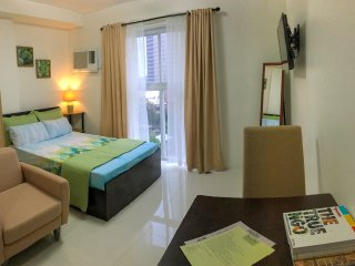 Cozy Studio with Elevator Access and Television - Mandaue vacation rentals