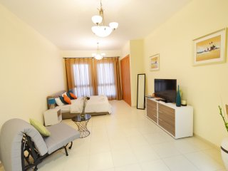 Comfortable Condo with Internet Access and A/C - Dubai vacation rentals