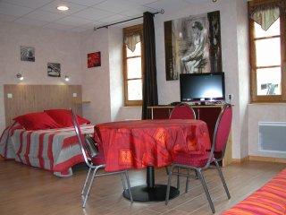 studio 3 étoiles face aux thermes - Neris-les-Bains vacation rentals