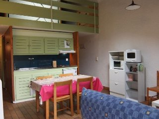 Beautiful House with Television and Microwave - Gere-Belesten vacation rentals