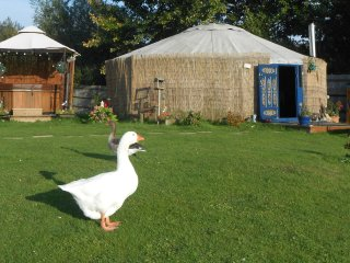 Lakeland Yurts private HOT TUB and Fishing  ESSEX - Hatfield Peverel vacation rentals